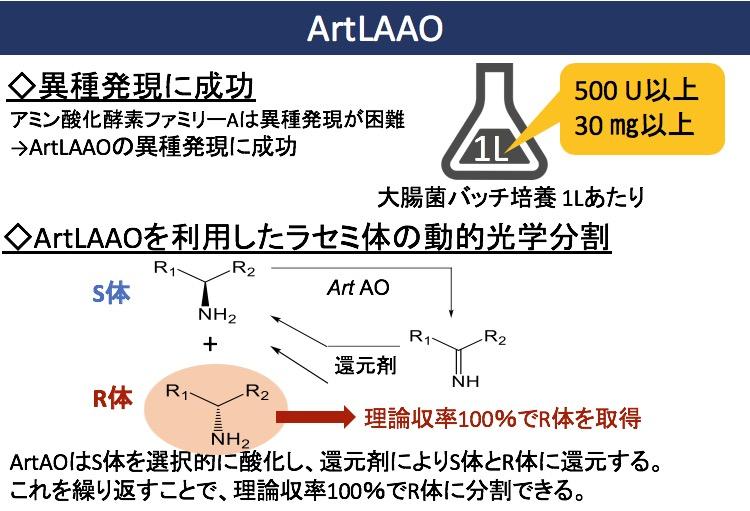 人工L-アミノ酸酸化酵素